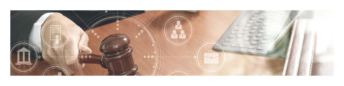 Preparing Expert Witnesses for Virtual Litigation