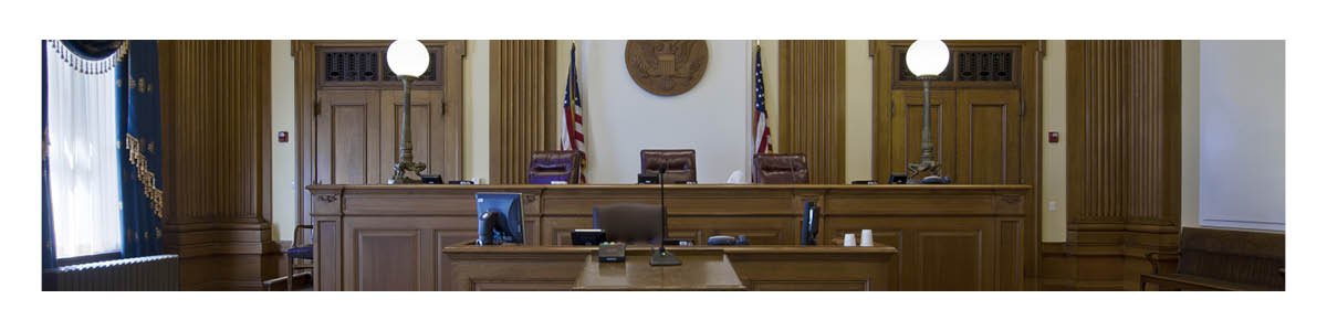 Trust, Winning and Losing as an Expert Witness